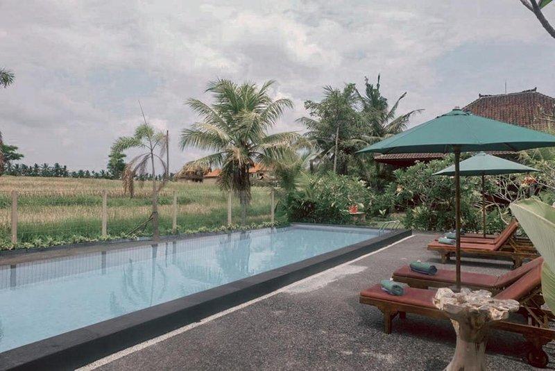 Sari Standart&One Bedroom Villas 8 Adult, holiday rental in Bedulu