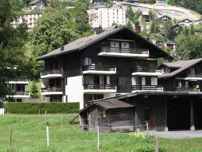 Sörenweg 5, vacation rental in Engelberg