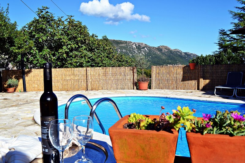 Apartment Ulika with Private Pool and BBQ, holiday rental in Vozilici