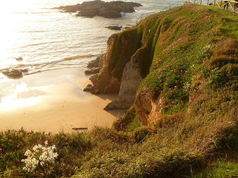 Vacaciones junto al mar, holiday rental in El Franco Municipality