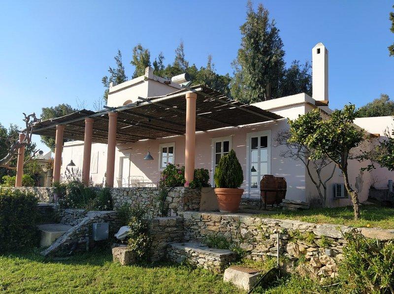 The Dovecot in Montofoli Wine Estate, alquiler vacacional en Karystos