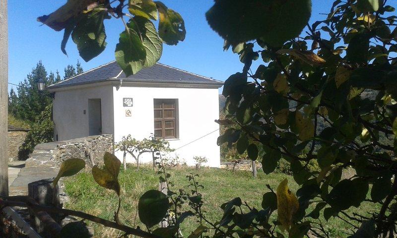 Casa Rural de alquiler integro La Cantina de Villarmayor. Asturias., vacation rental in Grandas de Salime Municipality