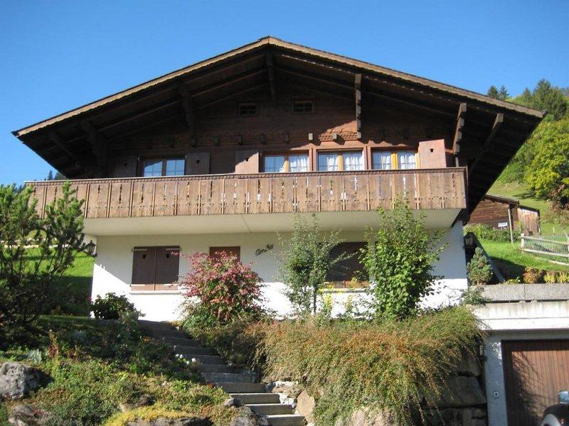 Arnika # 1, vacation rental in Lenk im Simmental