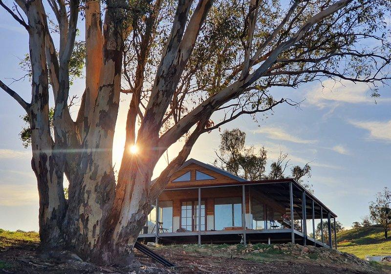 Kestrel Nest EcoHut, holiday rental in Adelong