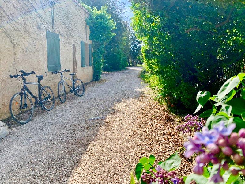 Maison de charme rénovée Luberon Ventoux 3 chambres, piscine, parc, sécurité, vacation rental in Carpentras