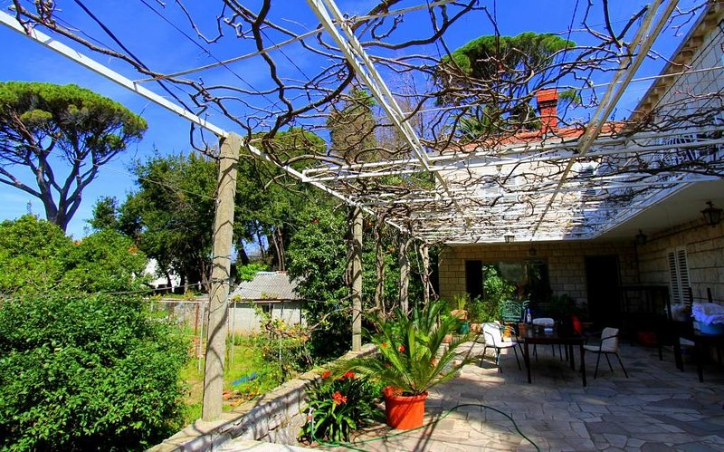 Guest House Zec - Studio with Terrace (3 Adults), holiday rental in Lopud