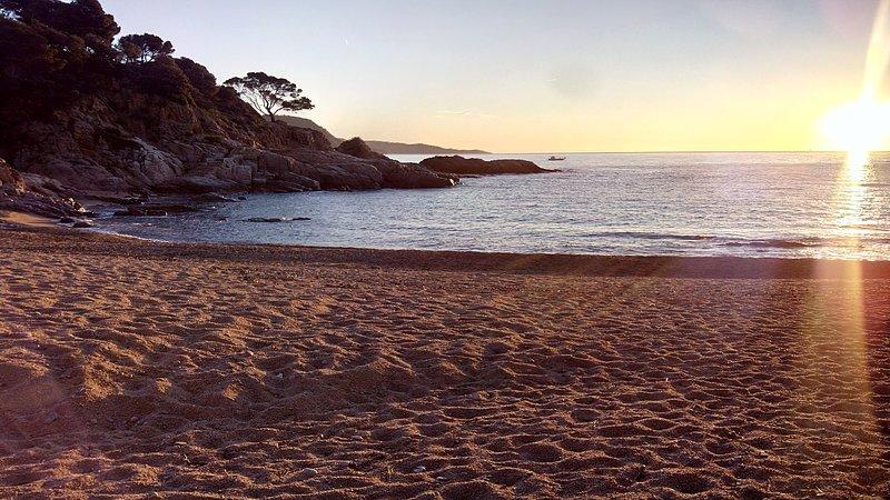 La playa privada está esperando, sí lo está ...