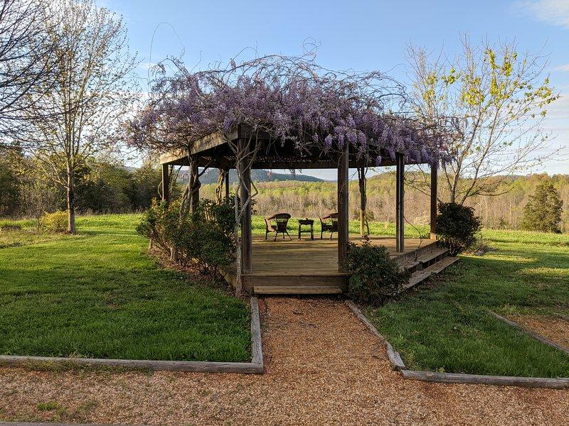 Back yard views and wisteria veranda