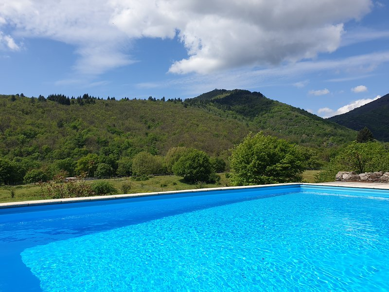 Spacious, 5-bedroom farmhouse in splendid idyll.  Private pool & 3ha of farmland, holiday rental in Camprieu