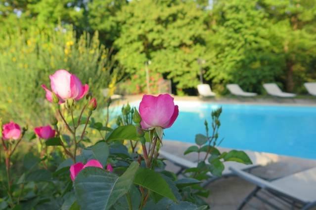 Luxury historic 7 bed villa in Tuscany. Sleeps 20, holiday rental in Anghiari