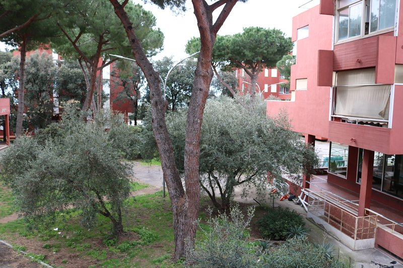 M.H LItoranea apartment, holiday rental in Follonica