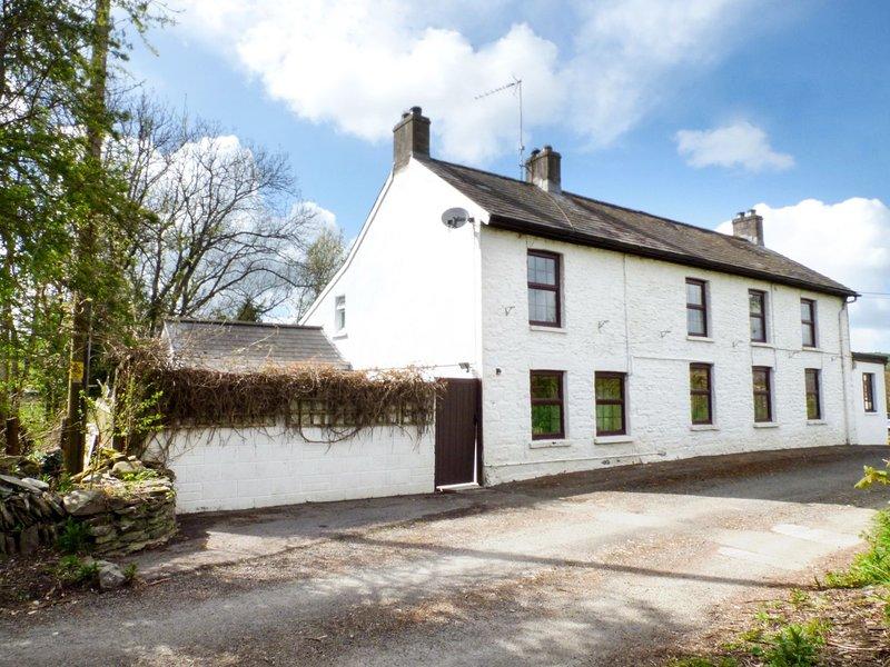 Old Railway Inn Cottage, Llanllwni, holiday rental in Brechfa