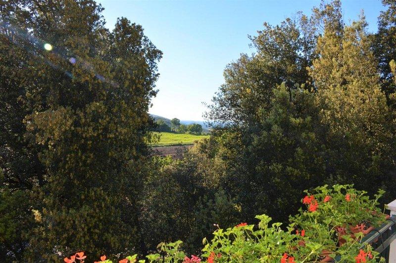 Bb Il Leccio , Umbria, vacation rental in Narni Scalo