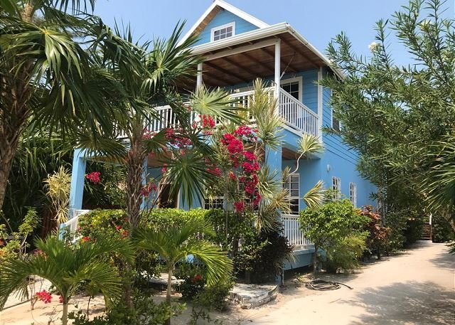 Sandy's is the bottom level of the blue house