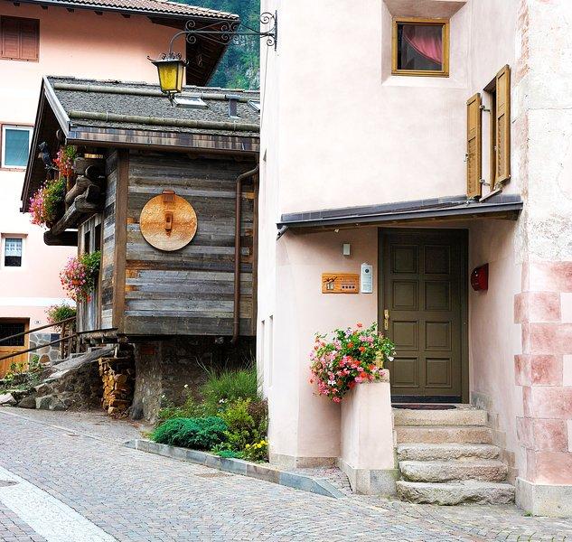 Appartamenti Boninsegna ~ Casa Nicoleta (1°piano), vakantiewoning in Ziano di Fiemme