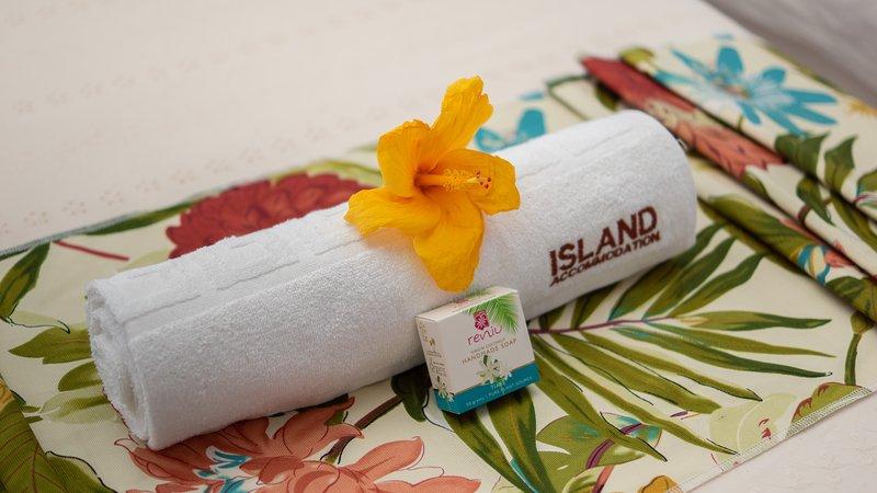 Island Luxury Villa Budget Double Room 2, holiday rental in Coral Coast