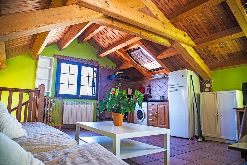 Casa Rural en Ordesa, pirineo aragonés., holiday rental in Espierba