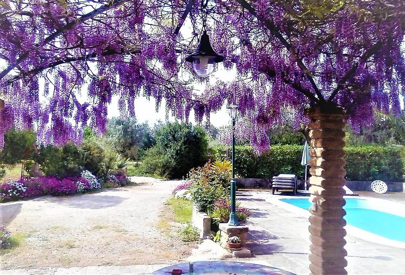 CASA SON JULIA- 4pax + 1 baby.  Pretty stone country cottage. Mallorca - Free Wi, holiday rental in Son Antem