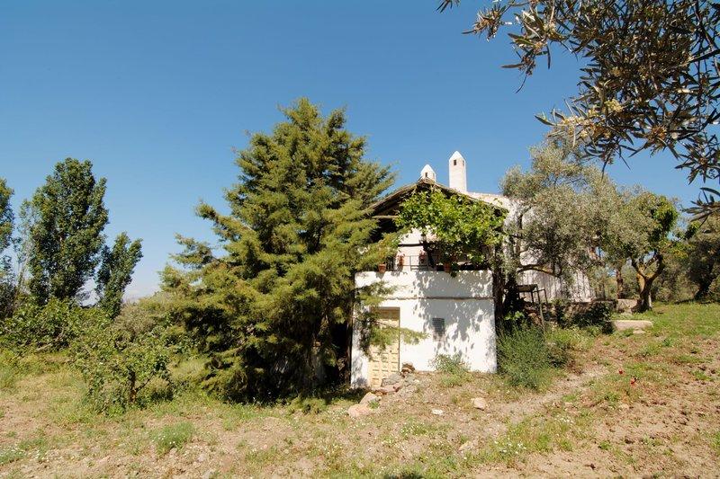 Entorno casa rural Olivos