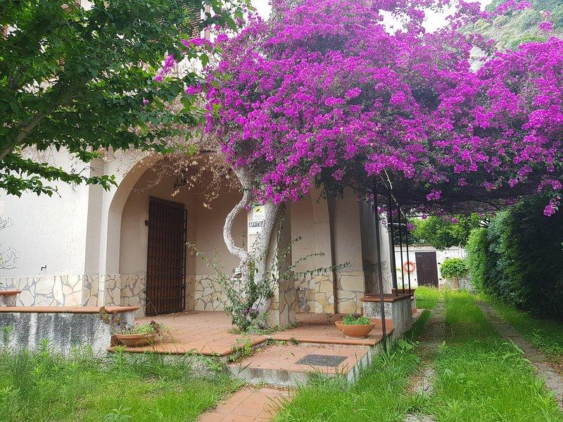 Villa Vit  vicino il mare,baia Santa Maria,Cetraro, vakantiewoning in Sangineto
