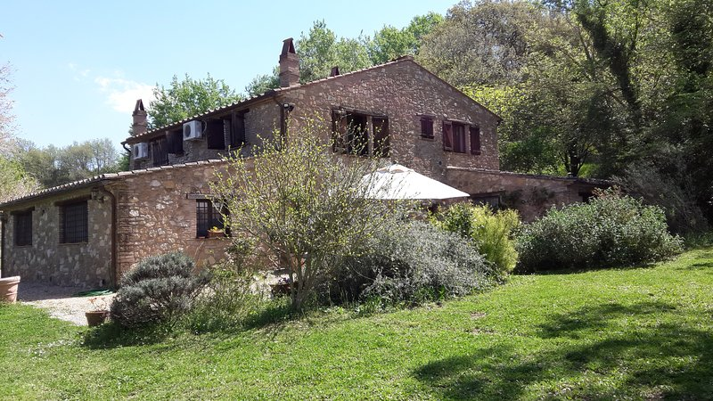 Apartment in Umbria countryside with pool, vacation rental in Otricoli