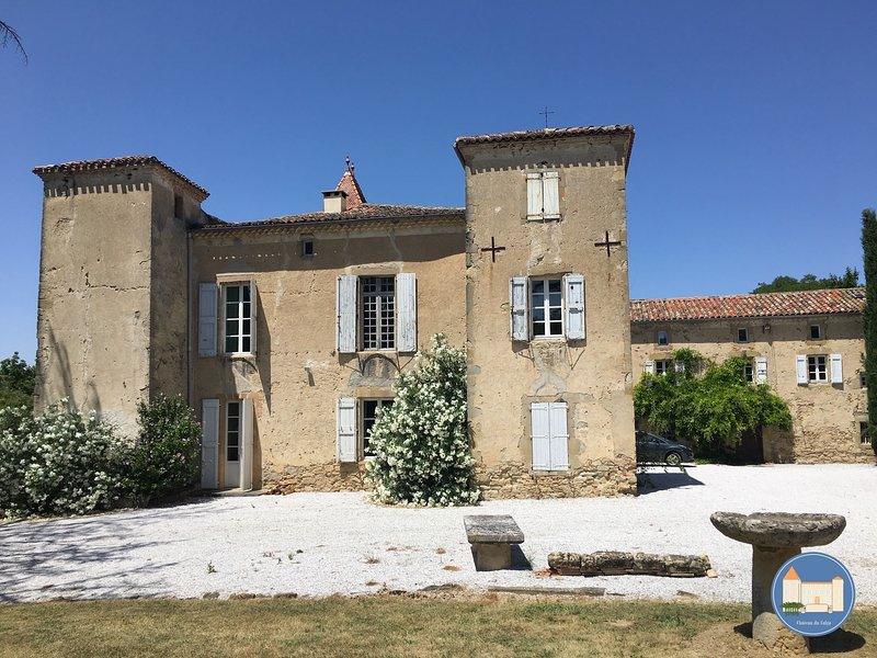 Château du Falga et sa piscine, holiday rental in Montgey