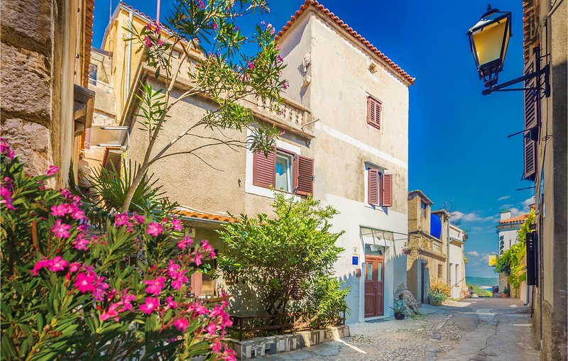 Beautiful home in Vrbnik with WiFi and 0 Bedrooms (CKK928), casa vacanza a Risika