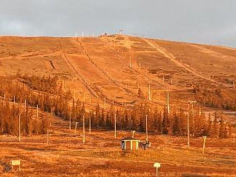 Ski chalets 6405, holiday rental in Yllasjarvi