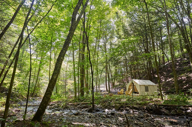 Tentrr Signature Site - Huntley Hollow Brook, vacation rental in Andes