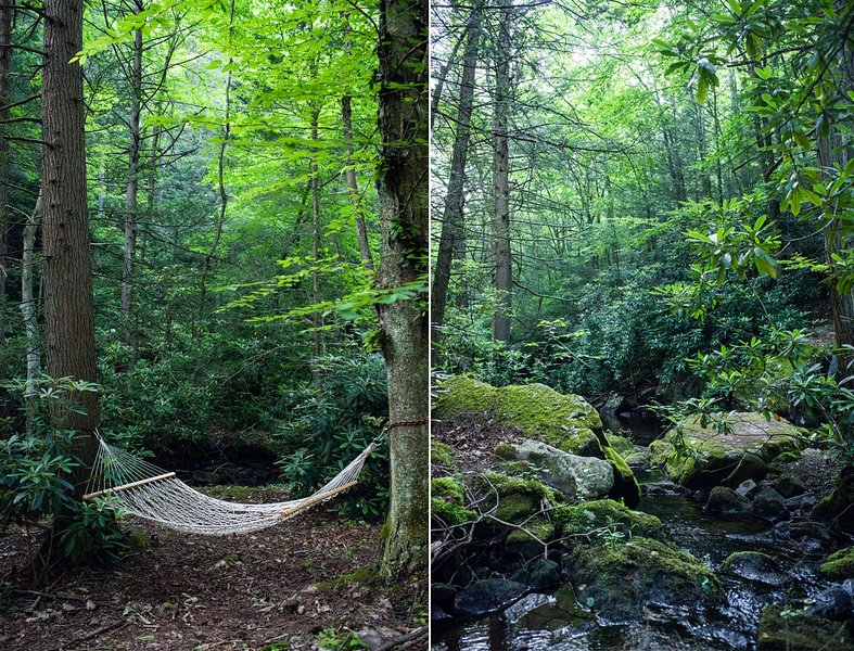 Tentrr Signature Site - A Creek Runs Through It, location de vacances à Drums