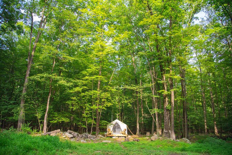 Tentrr Signature Site - Kamp Kimberg North, vacation rental in Hurley