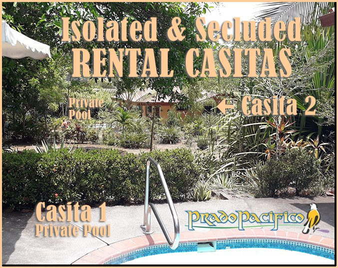 Both Casitas has its own PRIVATE pool and is separated by tropical gardens