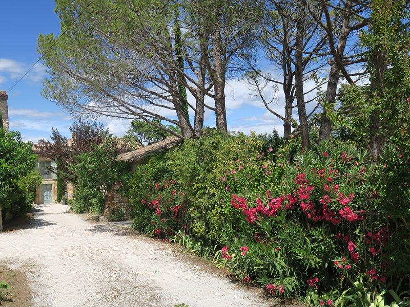 Gîte Ventoux authentique, calme dans mas restauré pour 2 personnes, holiday rental in Roussillon