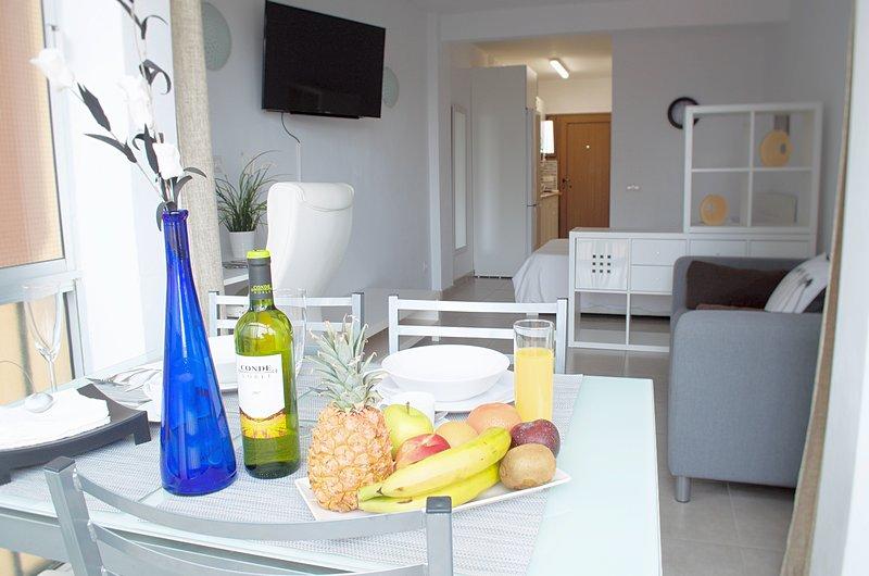Lujoso, Cómodo y Luminoso Estudio, holiday rental in Punta Brava