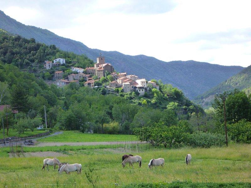 Comfortabel natuurhuis in de bergen van de PO: mooie wandelingen, rust en stilte, vacation rental in Finestret