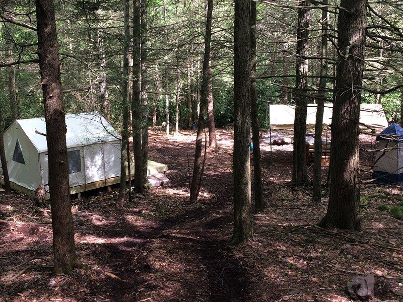 Tentrr Signature Site - Retreat on Bear Creek, holiday rental in Palmerton