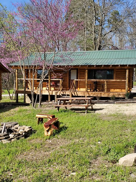 Cozy Log Cabin in our family retreat on Lake Hamilton (no cleaning fee), holiday rental in Hot Springs