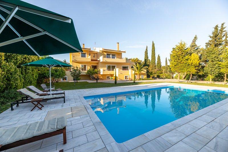 Villa Valma, holiday rental in Palaia Fokaia