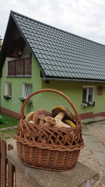 Domček u Ferka, vacation rental in Kosice Region