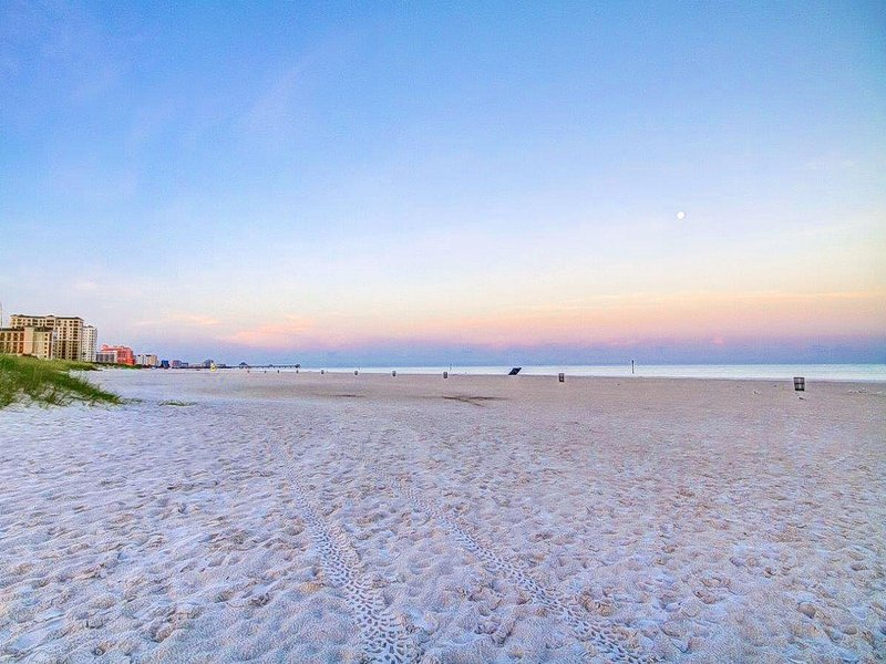 Florida Beach Rentals 241 Beach