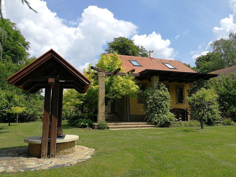 Modern eingerichtetes, klimatisiertes, exlusives Ferienhaus am Velence-See – semesterbostad i Rackeve