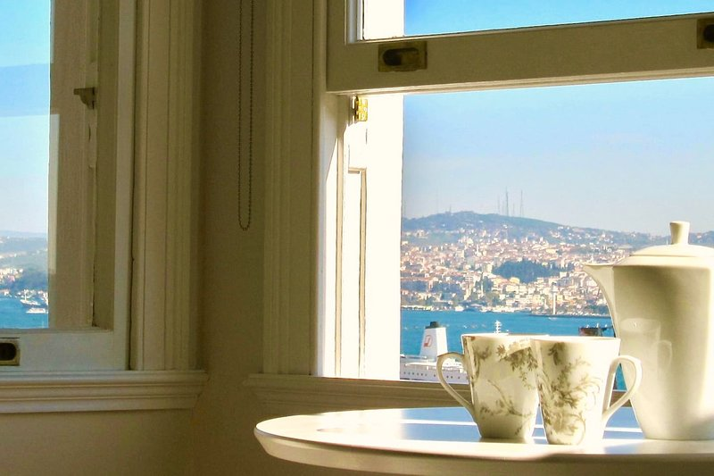 Elegant, bright, lovely sea views in Galata!, vacation rental in Istanbul