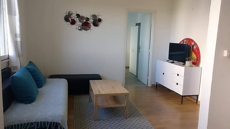Apartment in Clermont-Ferrand, holiday rental in Orleat