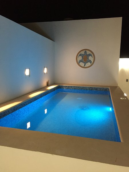 Beautiful brand new apartment with rooftop pool, holiday rental in Playacar