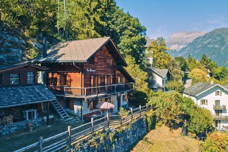 Chalet les Mésanges - Salvan, holiday rental in Bovernier