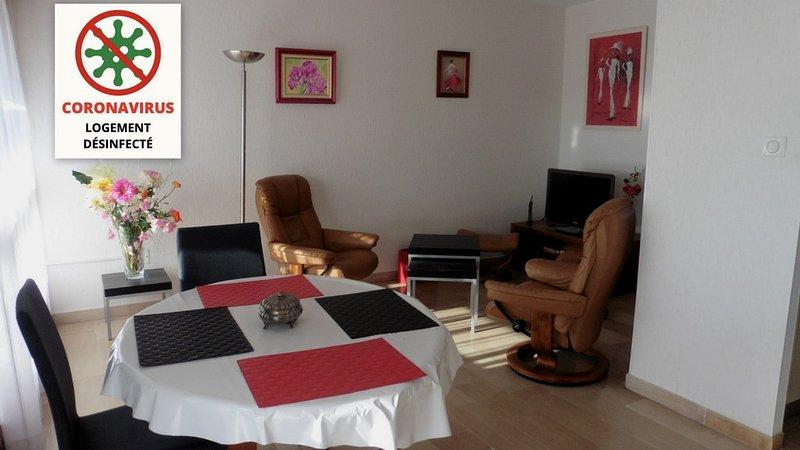 Appt. calme centre avignon 4 personnes, vacation rental in Avignon