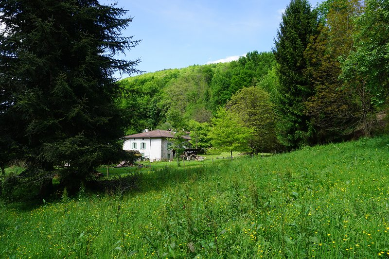 Delightful period stone house with private stream and woodland, holiday rental in Boussenac