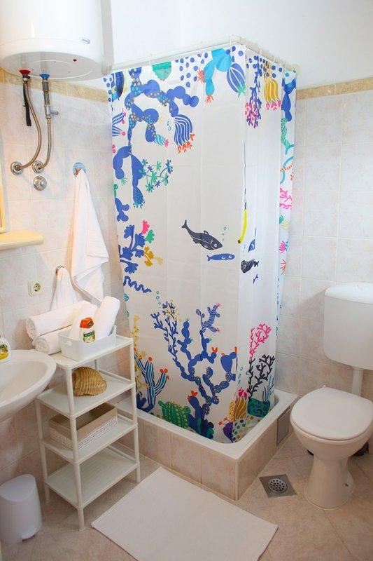 A2(5+1): bathroom with toilet