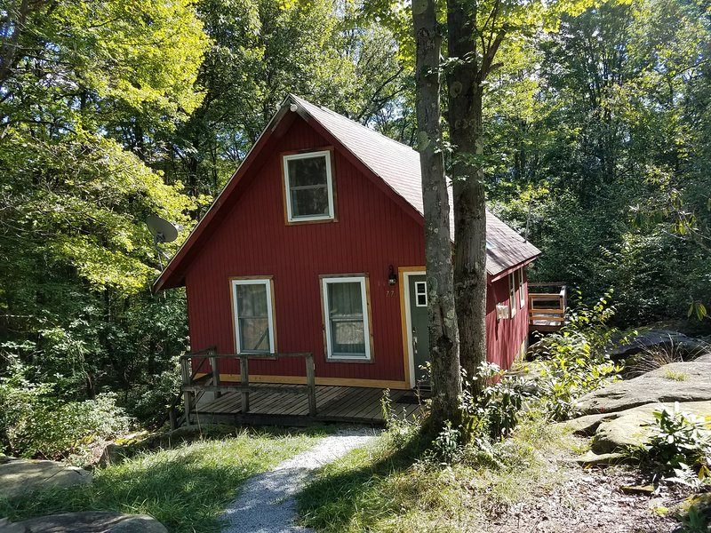 Raccoon Retreat - an Artist's home in the Forest, holiday rental in Reedsville