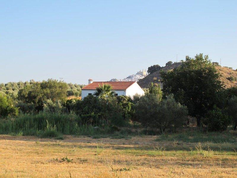 Rural Holiday Home With Pool Near Olvera, Ronda, alquiler de vacaciones en Setenil de las Bodegas